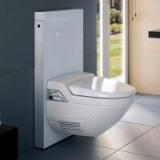 Сантехническая инсталляция как элемент современного дизайн-проекта туалета
